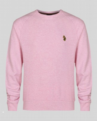 GUYs Powder Pink