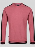 RON TRANTER DETAIL SWEAT
